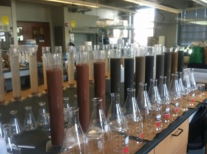 Soil particle size analyses